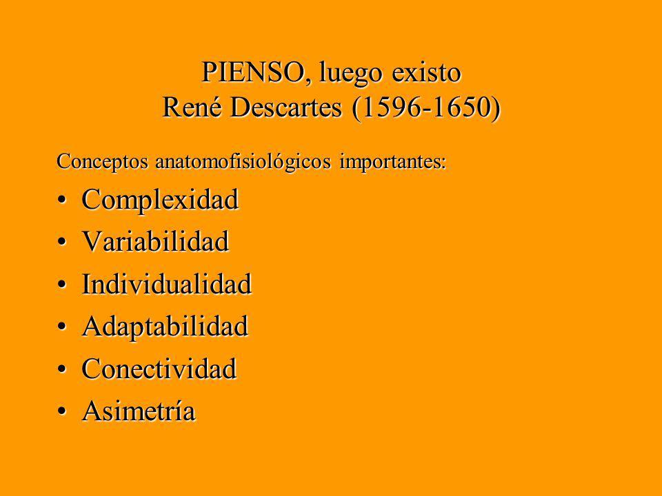 PIENSO, luego existo René Descartes (1596-1650) Conceptos anatomofisiológicos importantes: ComplexidadComplexidad VariabilidadVariabilidad IndividualidadIndividualidad AdaptabilidadAdaptabilidad ConectividadConectividad AsimetríaAsimetría