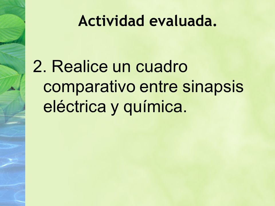 Actividad evaluada. 2. Realice un cuadro comparativo entre sinapsis eléctrica y química.