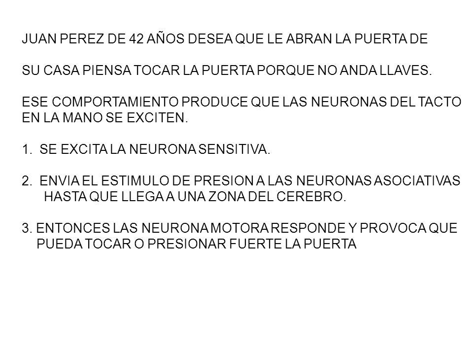 JUAN PEREZ DE 42 AÑOS DESEA QUE LE ABRAN LA PUERTA DE SU CASA PIENSA TOCAR LA PUERTA PORQUE NO ANDA LLAVES.