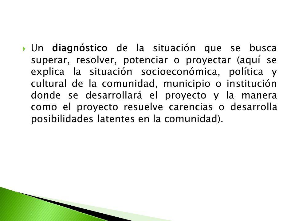 Un diagnóstico de la situación que se busca superar, resolver, potenciar o proyectar (aquí se explica la situación socioeconómica, política y cultural