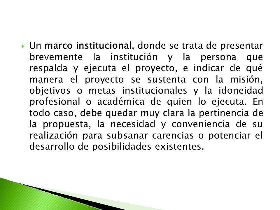 Un marco institucional, donde se trata de presentar brevemente la institución y la persona que respalda y ejecuta el proyecto, e indicar de qué manera