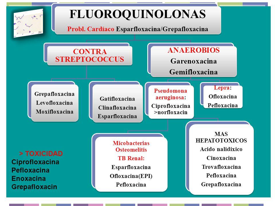 FLUOROQUINOLONAS Probl. Cardíaco Esparfloxacina/Grepafloxacina CONTRA STREPTOCOCCUS Grepafloxacina Levofloxacina Moxifloxacina Gatifloxacina Clinaflox