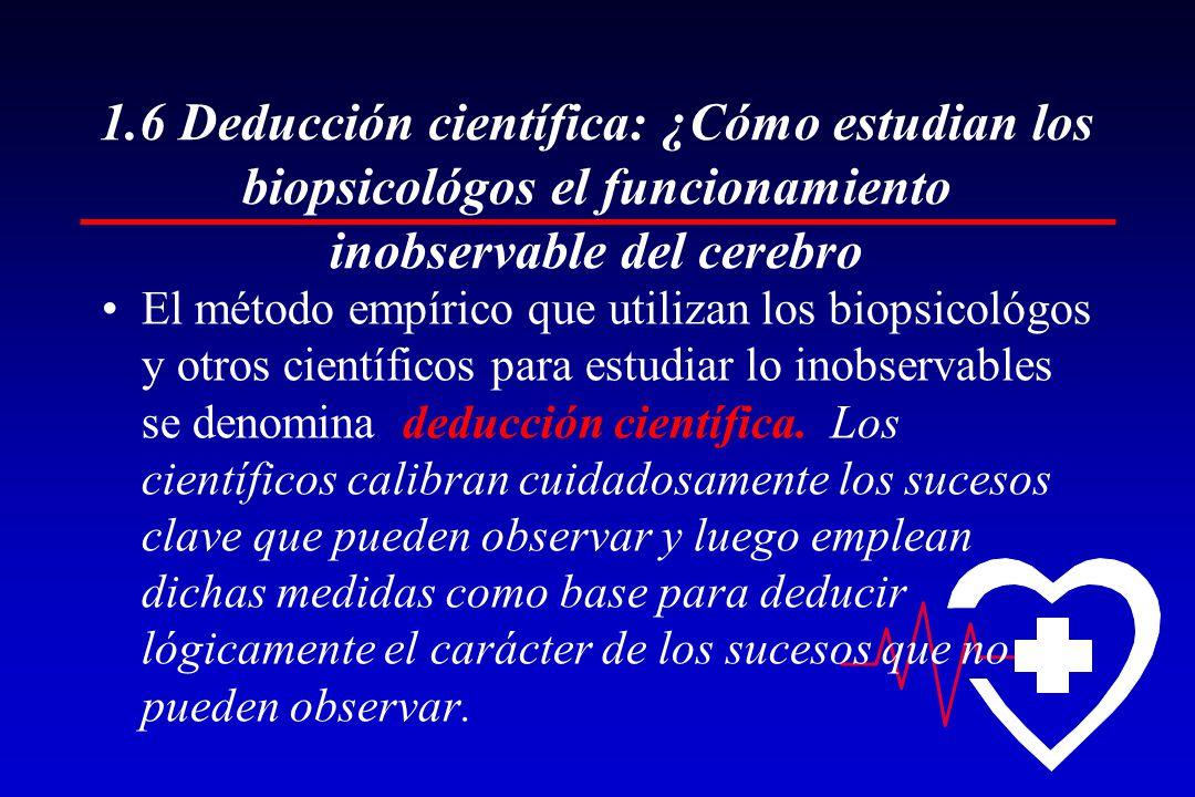1.6 Deducción científica: ¿Cómo estudian los biopsicológos el funcionamiento inobservable del cerebro El método empírico que utilizan los biopsicológos y otros científicos para estudiar lo inobservables se denomina deducción científica.