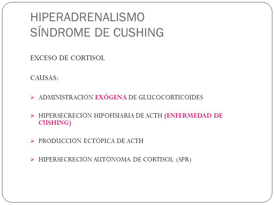 HIPERADRENALISMO SÍNDROME DE CUSHING EXCESO DE CORTISOL CAUSAS: ADMINISTRACIÓN EXÓGENA DE GLUCOCORTICOIDES HIPERSECRECIÓN HIPOFISIARIA DE ACTH (ENFERMEDAD DE CUSHING) PRODUCCIÓN ECTÓPICA DE ACTH HIPERSECRECIÓN AUTÓNOMA DE CORTISOL (SPR)