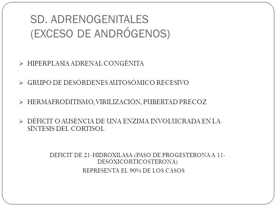 SD. ADRENOGENITALES (EXCESO DE ANDRÓGENOS) HIPERPLASIA ADRENAL CONGÉNITA GRUPO DE DESÓRDENES AUTOSÓMICO RECESIVO HERMAFRODITISMO, VIRILIZACIÓN, PUBERT