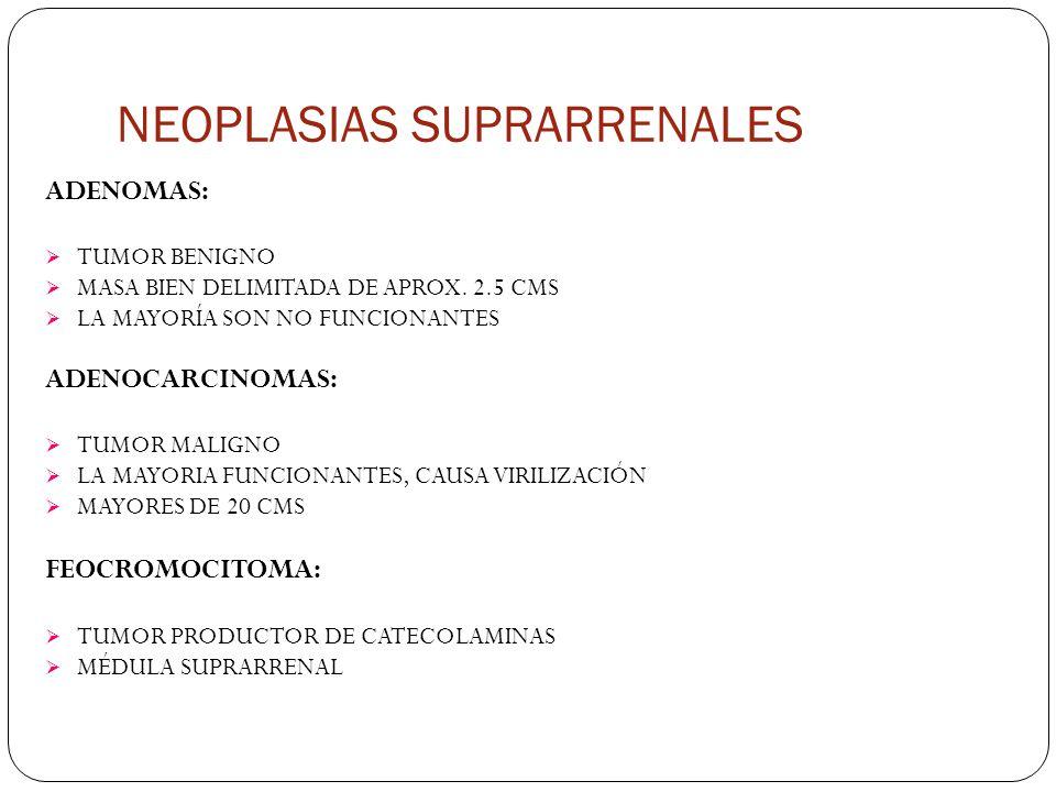 NEOPLASIAS SUPRARRENALES ADENOMAS: TUMOR BENIGNO MASA BIEN DELIMITADA DE APROX.