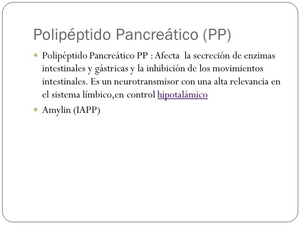 Polipéptido Pancreático (PP) Polipéptido Pancreático PP : Afecta la secreción de enzimas intestinales y gástricas y la inhibición de los movimientos intestinales.