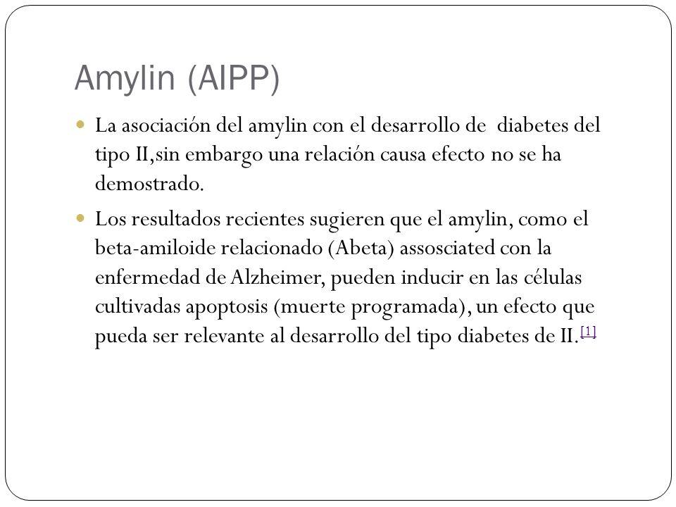 Amylin (AIPP) La asociación del amylin con el desarrollo de diabetes del tipo II,sin embargo una relación causa efecto no se ha demostrado.