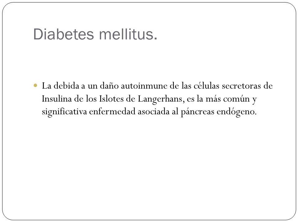 Diabetes mellitus. La debida a un daño autoinmune de las células secretoras de Insulina de los Islotes de Langerhans, es la más común y significativa