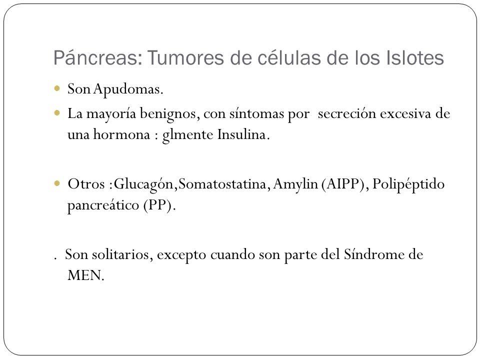 Páncreas: Tumores de células de los Islotes Son Apudomas. La mayoría benignos, con síntomas por secreción excesiva de una hormona : glmente Insulina.