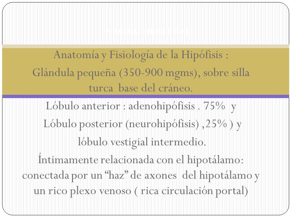 Adenoma de células corticotropas.> microadenomas.