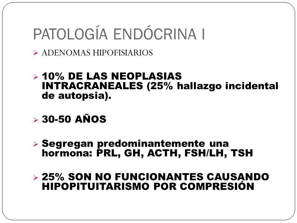 PATOLOGÍA ENDÓCRINA I ADENOMAS HIPOFISIARIOS 10% DE LAS NEOPLASIAS INTRACRANEALES (25% hallazgo incidental de autopsia). 30-50 AÑOS Segregan predomina