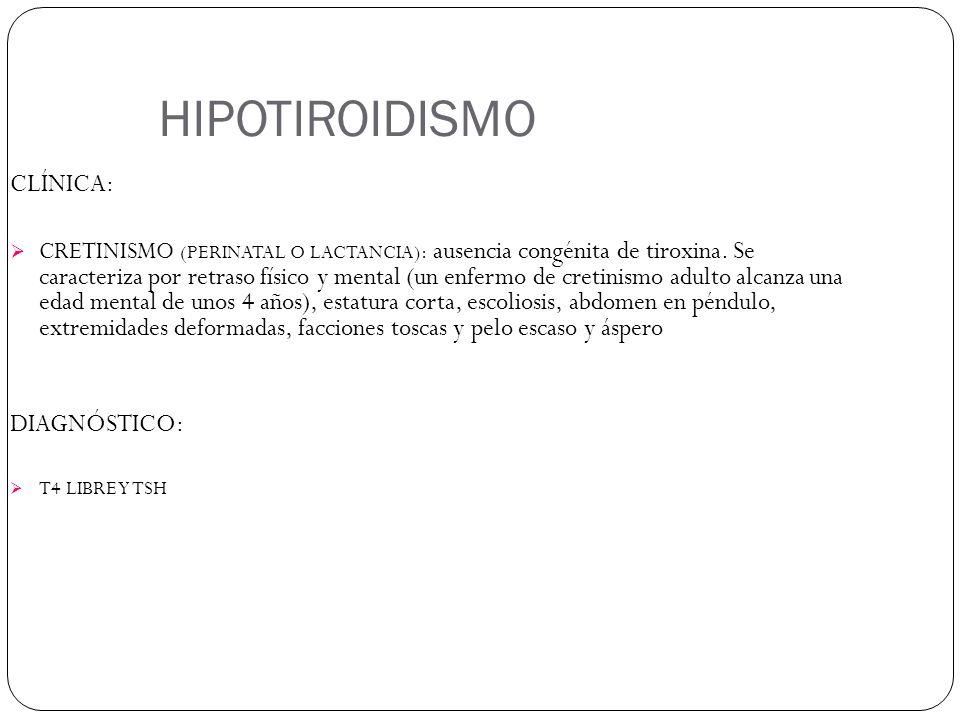 HIPOTIROIDISMO CLÍNICA: CRETINISMO (PERINATAL O LACTANCIA): ausencia congénita de tiroxina. Se caracteriza por retraso físico y mental (un enfermo de