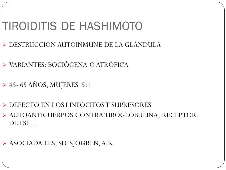 TIROIDITIS DE HASHIMOTO DESTRUCCIÓN AUTOINMUNE DE LA GLÁNDULA VARIANTES: BOCIÓGENA O ATRÓFICA 45- 65 AÑOS, MUJERES 5:1 DEFECTO EN LOS LINFOCITOS T SUPRESORES AUTOANTICUERPOS CONTRA TIROGLOBULINA, RECEPTOR DE TSH...