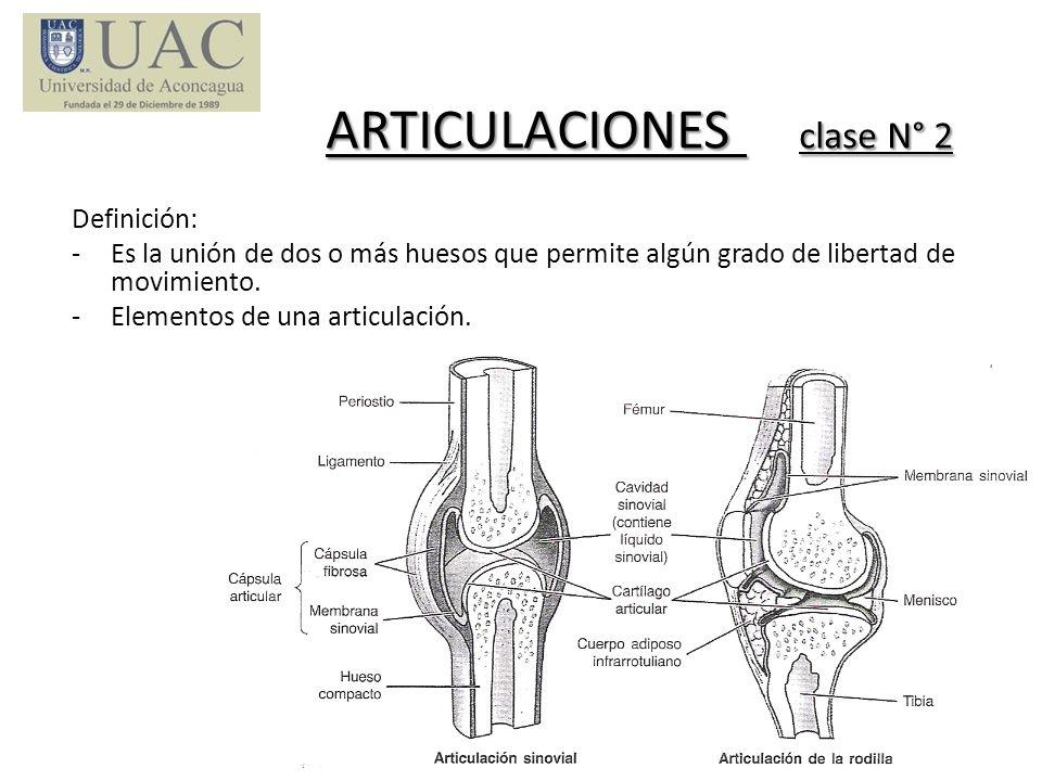 ARTICULACIONES clase N° 2 Definición: -Es la unión de dos o más huesos que permite algún grado de libertad de movimiento. -Elementos de una articulaci