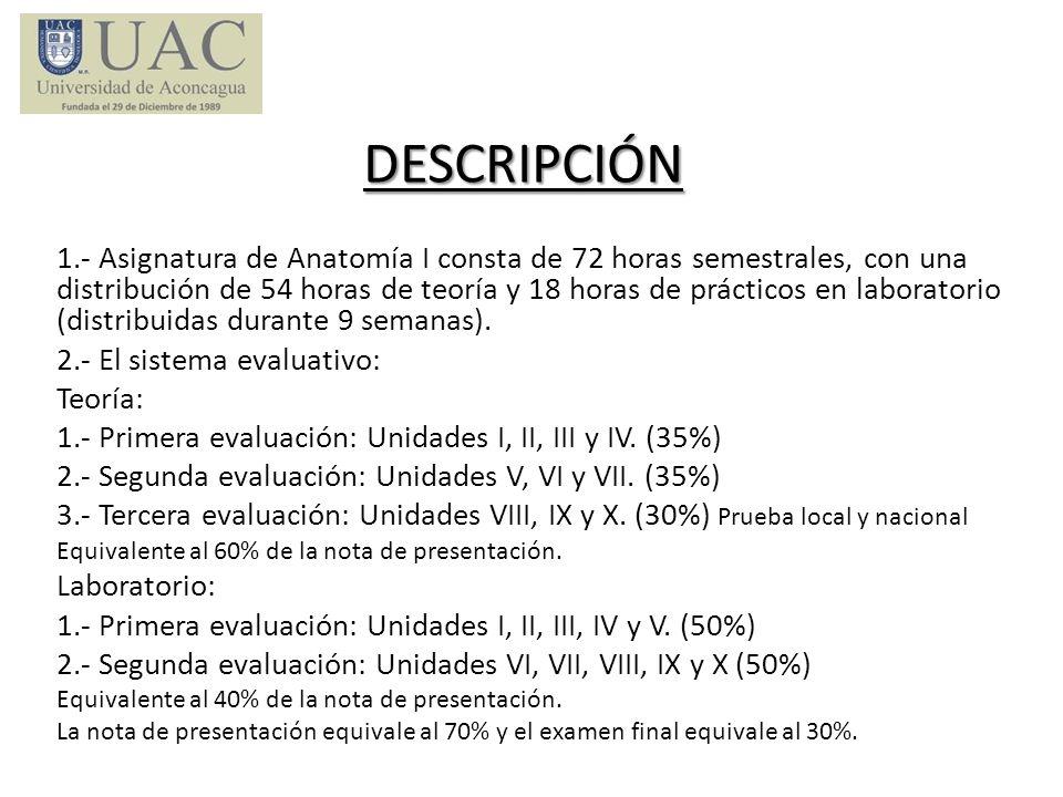 DESCRIPCIÓN 1.- Asignatura de Anatomía I consta de 72 horas semestrales, con una distribución de 54 horas de teoría y 18 horas de prácticos en laborat