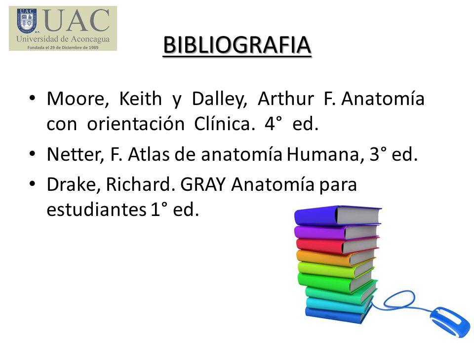 BIBLIOGRAFIA Moore, Keith y Dalley, Arthur F. Anatomía con orientación Clínica. 4° ed. Netter, F. Atlas de anatomía Humana, 3° ed. Drake, Richard. GRA