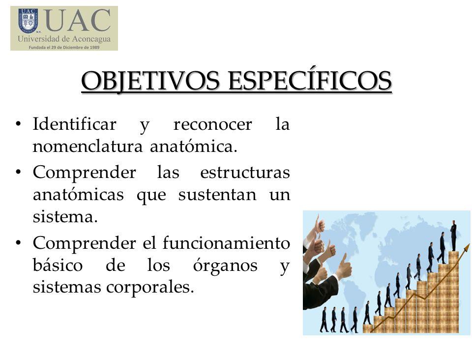 UNIDAD N° 1 Conceptos básicos de Anatomía: 1.- Definición y su clasificación.