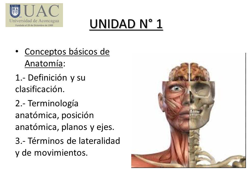 UNIDAD N° 1 Conceptos básicos de Anatomía: 1.- Definición y su clasificación. 2.- Terminología anatómica, posición anatómica, planos y ejes. 3.- Térmi