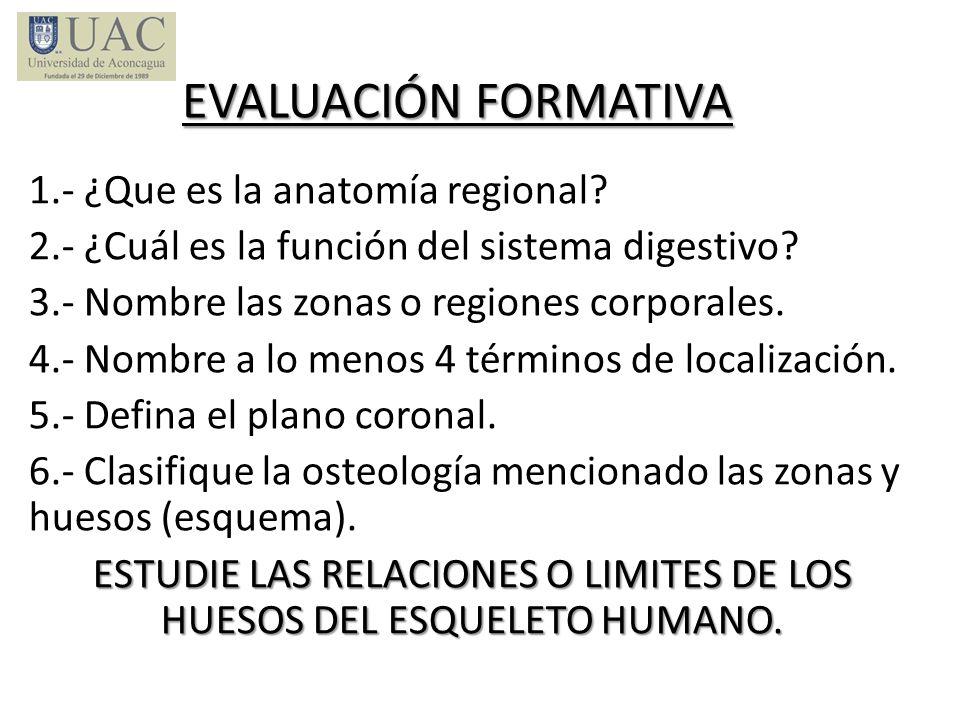 EVALUACIÓN FORMATIVA 1.- ¿Que es la anatomía regional? 2.- ¿Cuál es la función del sistema digestivo? 3.- Nombre las zonas o regiones corporales. 4.-