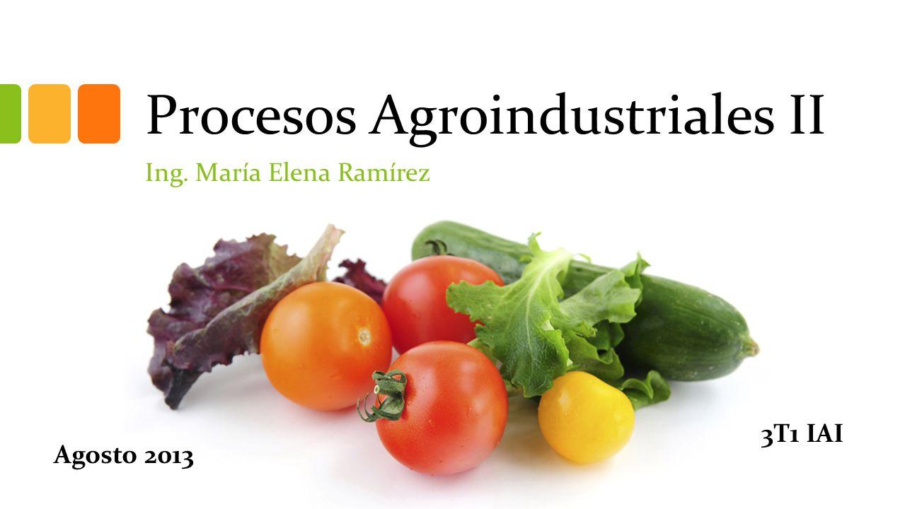 Procesos Agroindustriales II Ing. María Elena Ramírez 3T1 IAI Agosto 2013