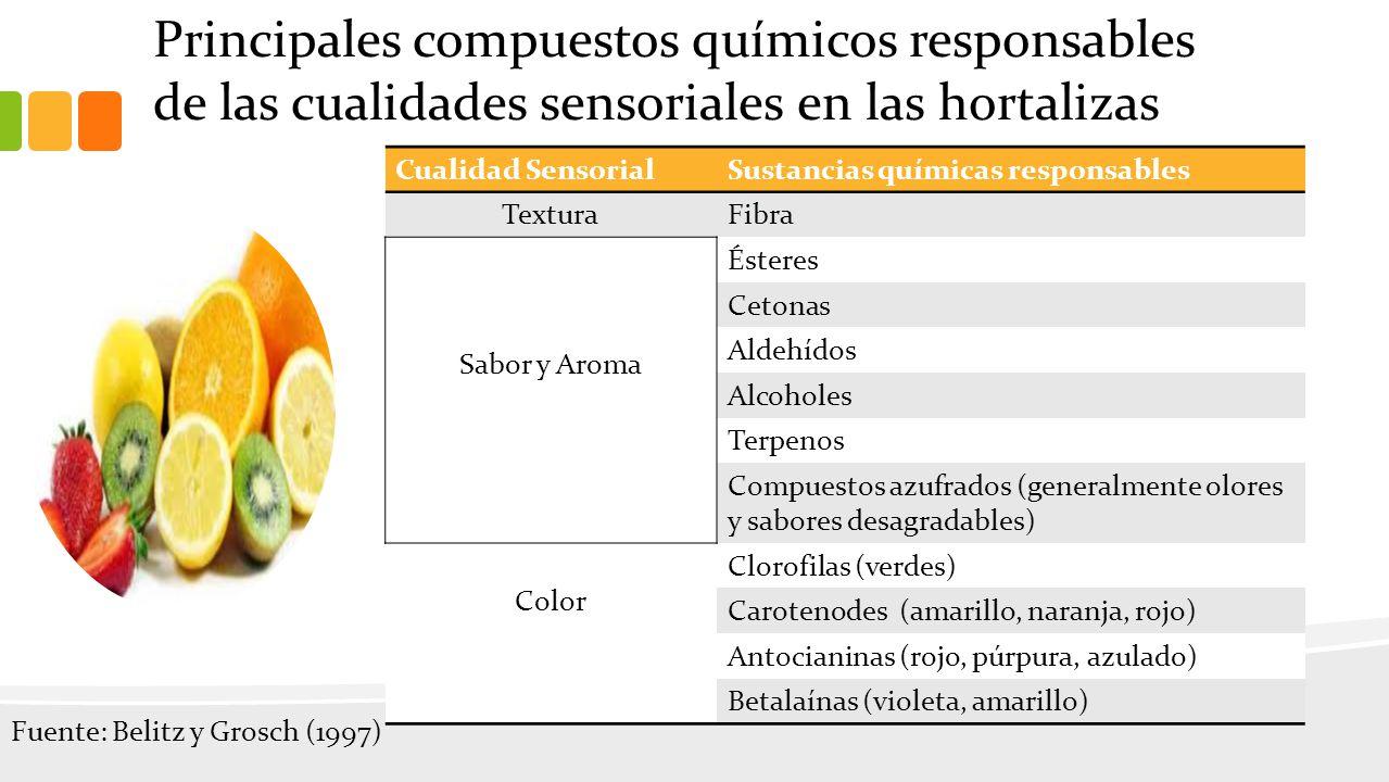 Principales compuestos químicos responsables de las cualidades sensoriales en las hortalizas Cualidad SensorialSustancias químicas responsables TexturaFibra Sabor y Aroma Ésteres Cetonas Aldehídos Alcoholes Terpenos Compuestos azufrados (generalmente olores y sabores desagradables) Color Clorofilas (verdes) Carotenodes (amarillo, naranja, rojo) Antocianinas (rojo, púrpura, azulado) Betalaínas (violeta, amarillo) Fuente: Belitz y Grosch (1997)