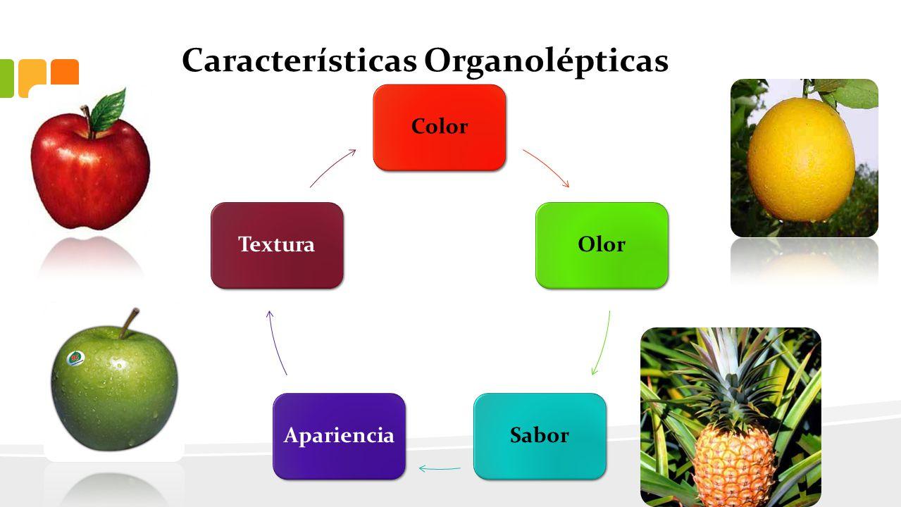 Características Organolépticas ColorOlorSaborAparienciaTextura