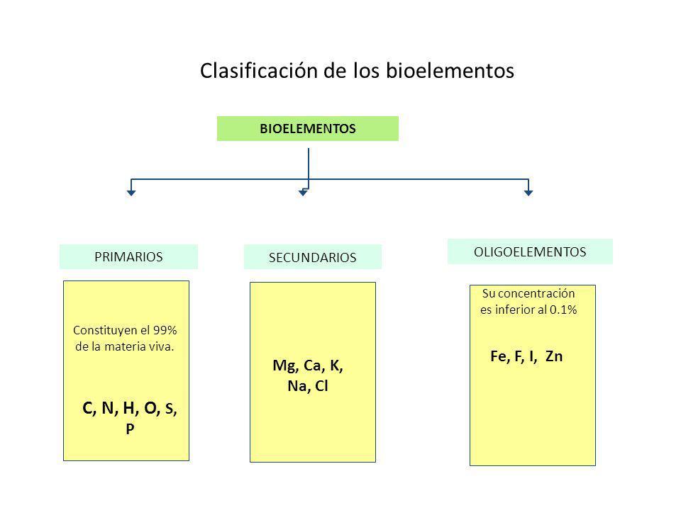 Clasificación de los bioelementos SECUNDARIOS OLIGOELEMENTOS Constituyen el 99% de la materia viva. C, N, H, O, S, P Mg, Ca, K, Na, Cl BIOELEMENTOS PR