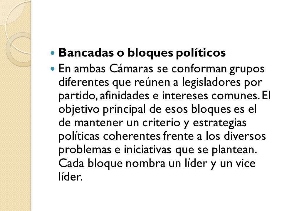 Bancadas o bloques políticos En ambas Cámaras se conforman grupos diferentes que reúnen a legisladores por partido, afinidades e intereses comunes. El
