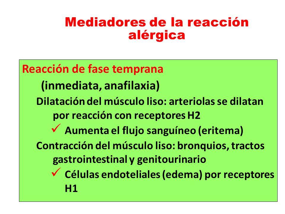 Mediadores de la reacción alérgica Reacción de fase temprana (inmediata, anafilaxia) Dilatación del músculo liso: arteriolas se dilatan por reacción c