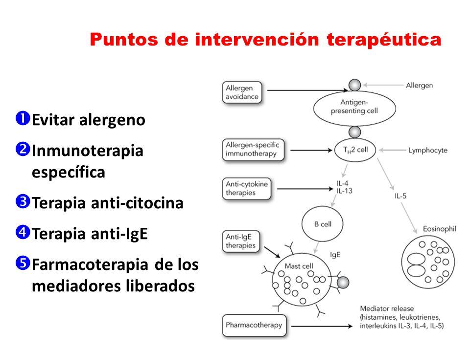 Puntos de intervención terapéutica Evitar alergeno Inmunoterapia específica Terapia anti-citocina Terapia anti-IgE Farmacoterapia de los mediadores li