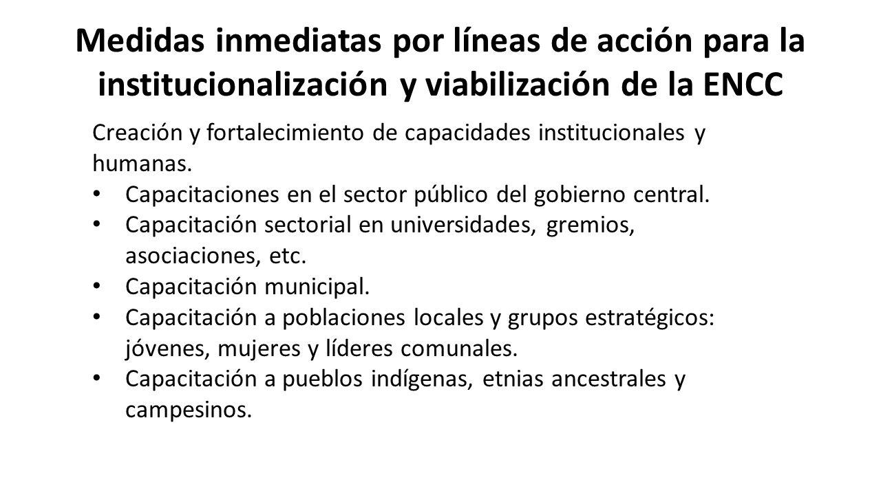 Medidas inmediatas por líneas de acción para la institucionalización y viabilización de la ENCC Creación y fortalecimiento de capacidades institucionales y humanas.
