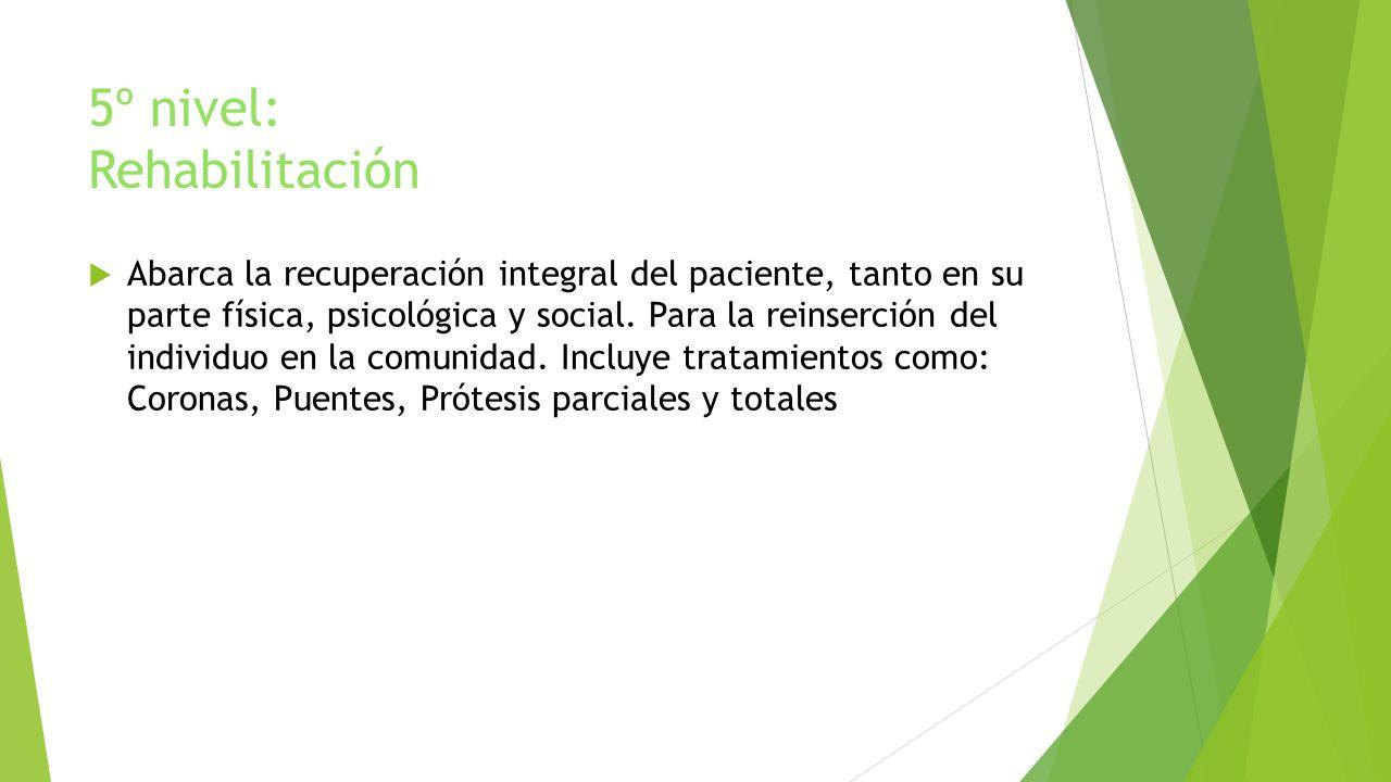 5º nivel: Rehabilitación Abarca la recuperación integral del paciente, tanto en su parte física, psicológica y social. Para la reinserción del individ