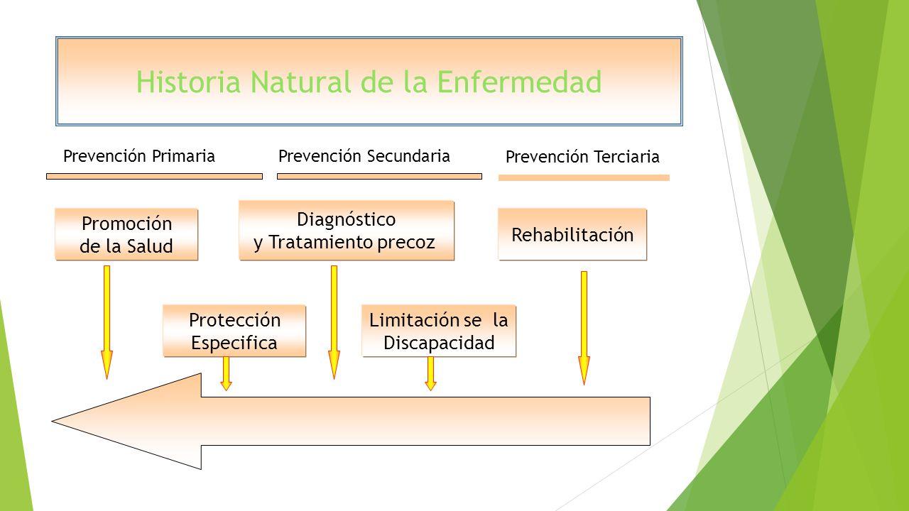 Historia Natural de la Enfermedad Promoción de la Salud Diagnóstico y Tratamiento precoz Protección Especifica Limitación se la Discapacidad Rehabilit
