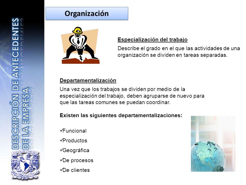 Especialización del trabajo Describe el grado en el que las actividades de una organización se dividen en tareas separadas. Departamentalización Una v