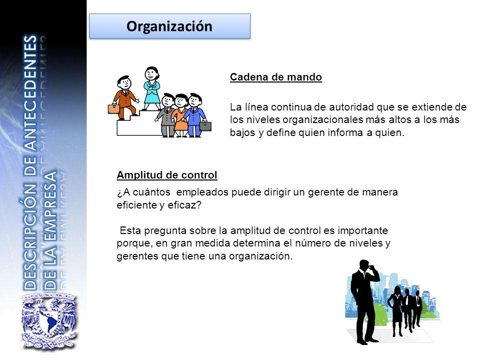 Cadena de mando La línea continua de autoridad que se extiende de los niveles organizacionales más altos a los más bajos y define quien informa a quie