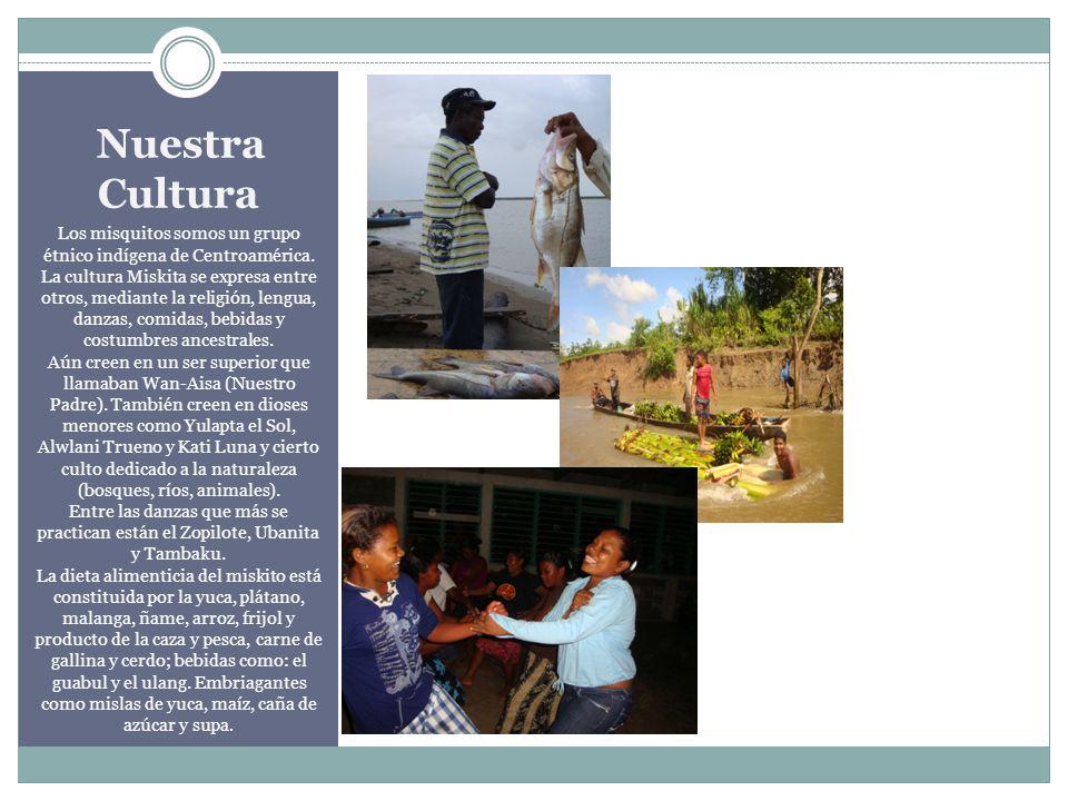 Nuestra Cultura Los misquitos somos un grupo étnico indígena de Centroamérica. La cultura Miskita se expresa entre otros, mediante la religión, lengua