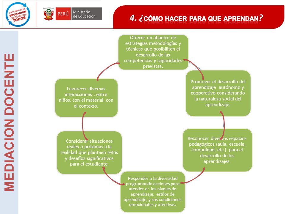 Ofrecer un abanico de estrategias metodologías y técnicas que posibiliten el desarrollo de las competencias y capacidades previstas. Promover el desar