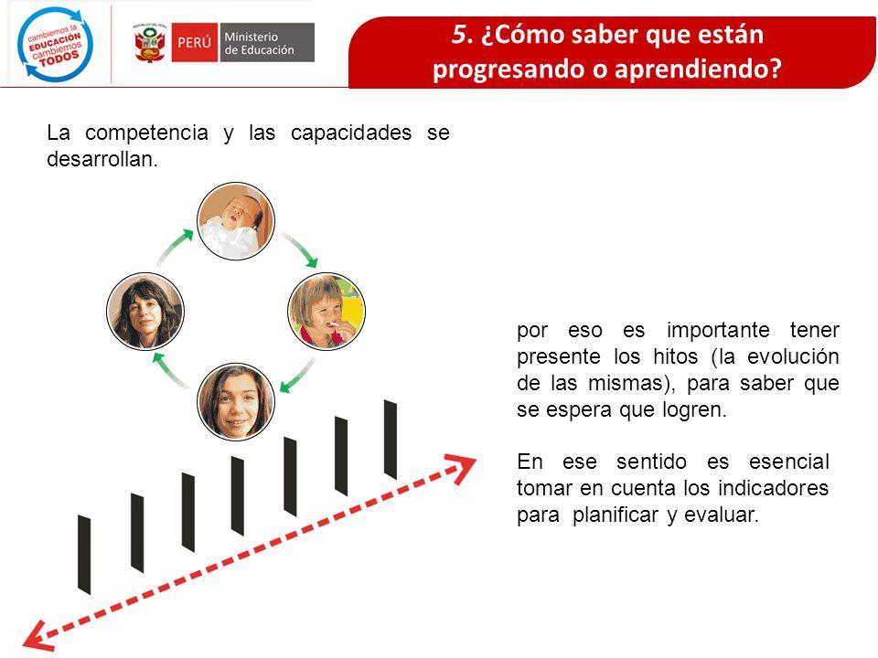 5. ¿Cómo saber que están progresando o aprendiendo? La competencia y las capacidades se desarrollan. por eso es importante tener presente los hitos (l