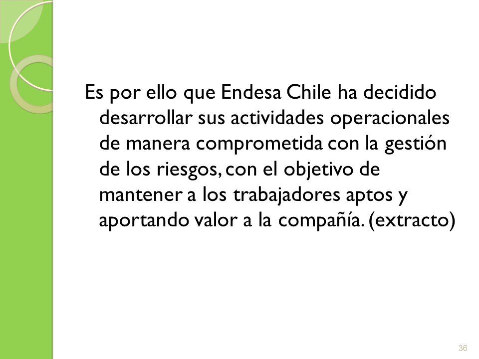 Es por ello que Endesa Chile ha decidido desarrollar sus actividades operacionales de manera comprometida con la gestión de los riesgos, con el objeti