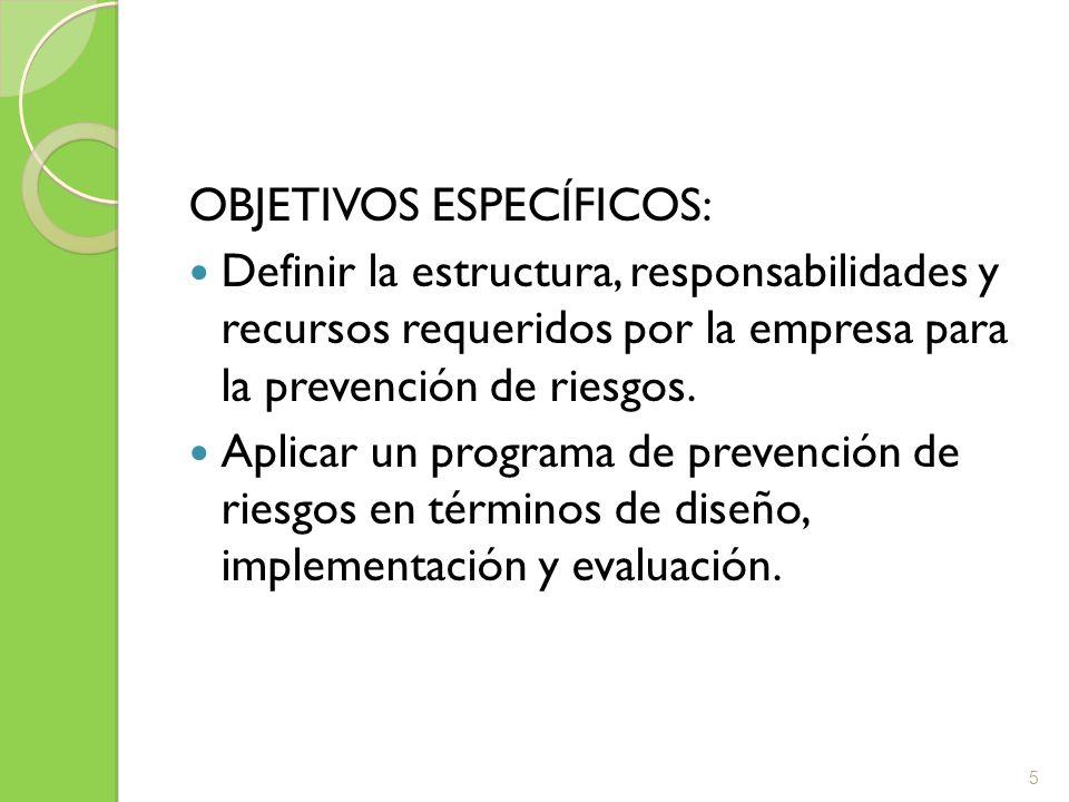 OBJETIVOS ESPECÍFICOS: Definir la estructura, responsabilidades y recursos requeridos por la empresa para la prevención de riesgos. Aplicar un program