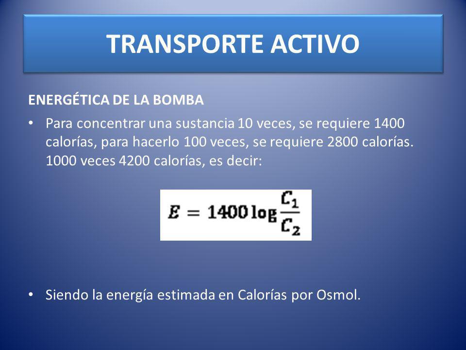 TRANSPORTE ACTIVO ENERGÉTICA DE LA BOMBA Para concentrar una sustancia 10 veces, se requiere 1400 calorías, para hacerlo 100 veces, se requiere 2800 c