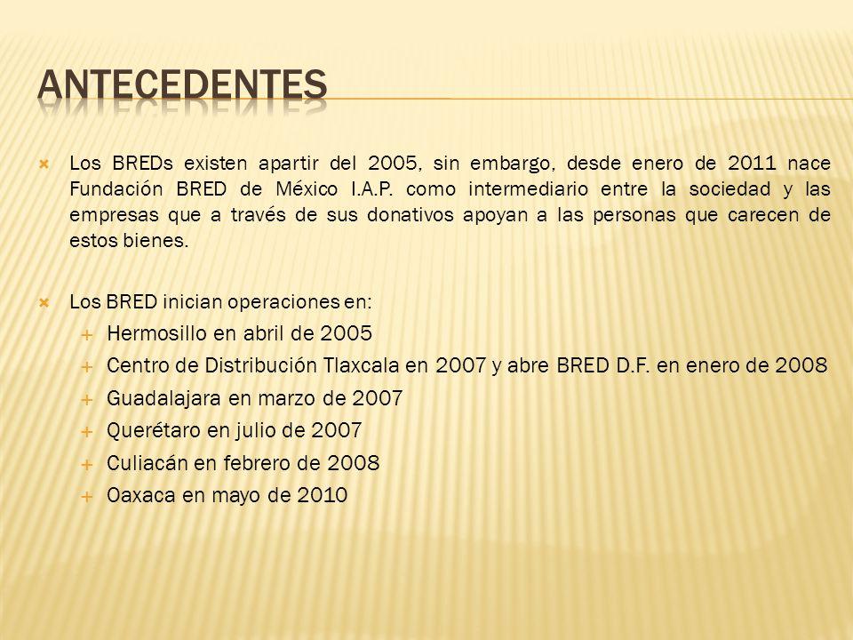 Los BREDs existen apartir del 2005, sin embargo, desde enero de 2011 nace Fundación BRED de México I.A.P. como intermediario entre la sociedad y las e