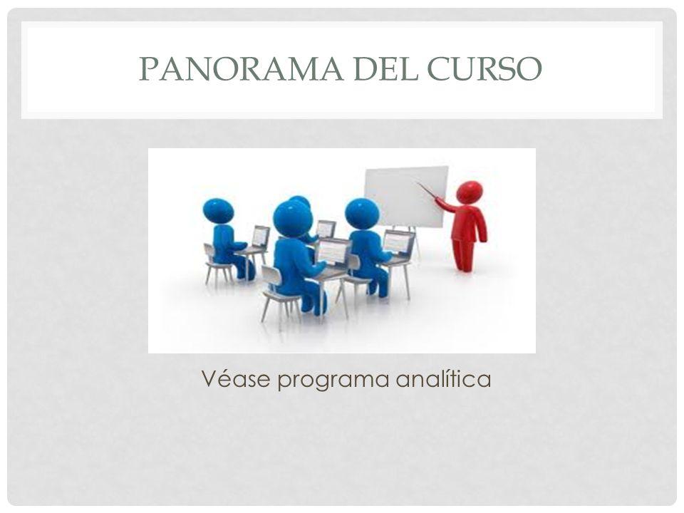 PANORAMA DEL CURSO Véase programa analítica