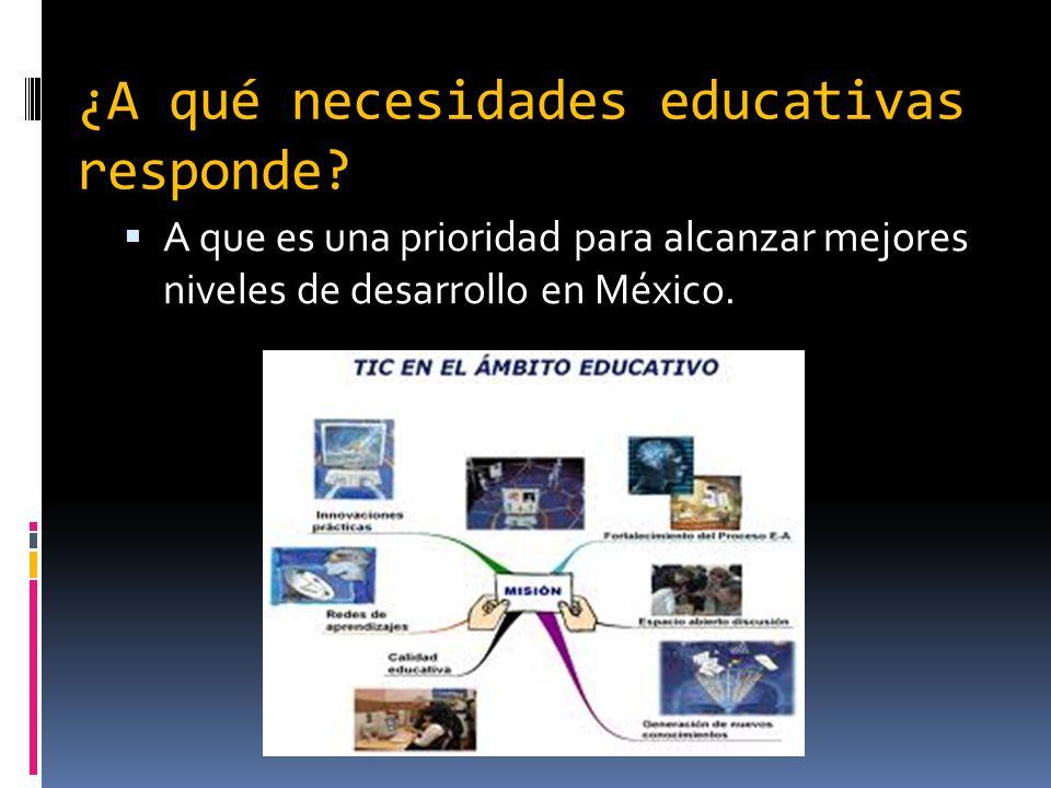 ¿A qué necesidades educativas responde.