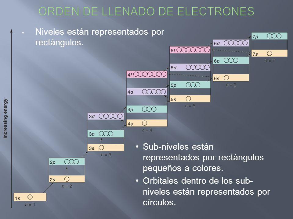 Niveles están representados por rectángulos. Sub-niveles están representados por rectángulos pequeños a colores. Orbitales dentro de los sub- niveles
