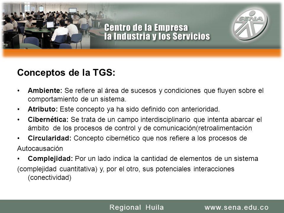 SENA REGIONAL HUILA REGIONAL HUILA CENTRO DE LA INDUSTRIA LA EMPRESA Y LOS SERVICIOS www.sena.edu.coRegional Huila Conceptos de la TGS: Ambiente: Se r