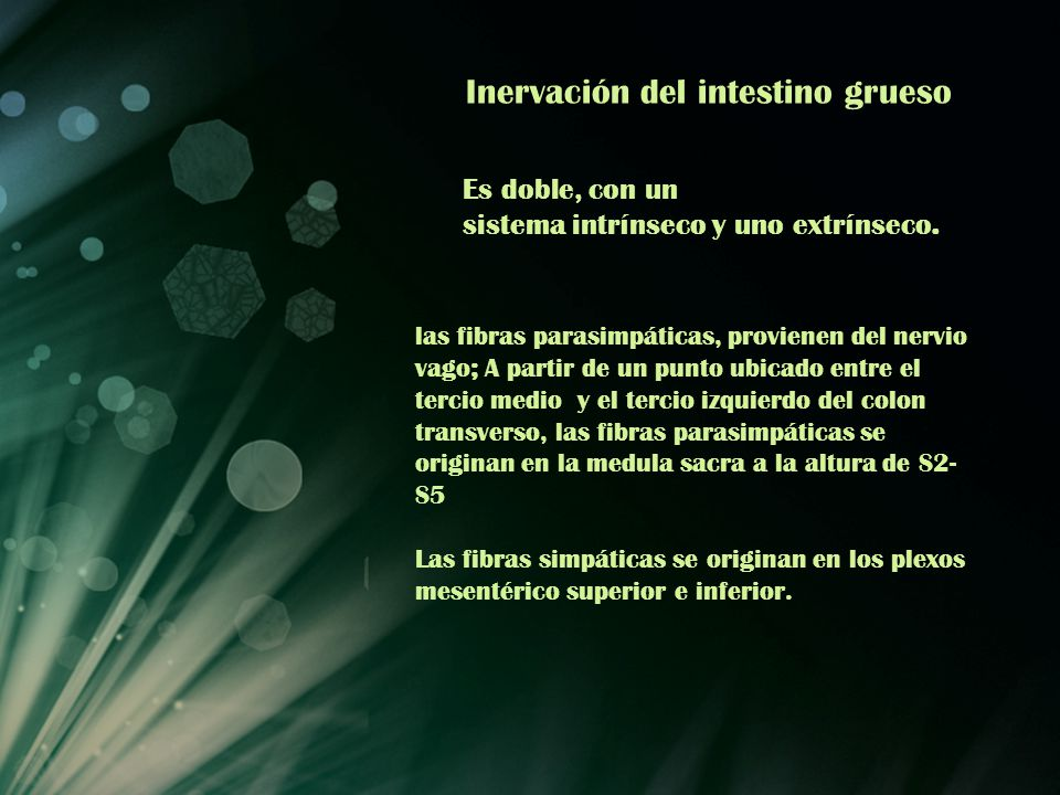 Inervación del intestino grueso Es doble, con un sistema intrínseco y uno extrínseco. las fibras parasimpáticas, provienen del nervio vago; A partir d