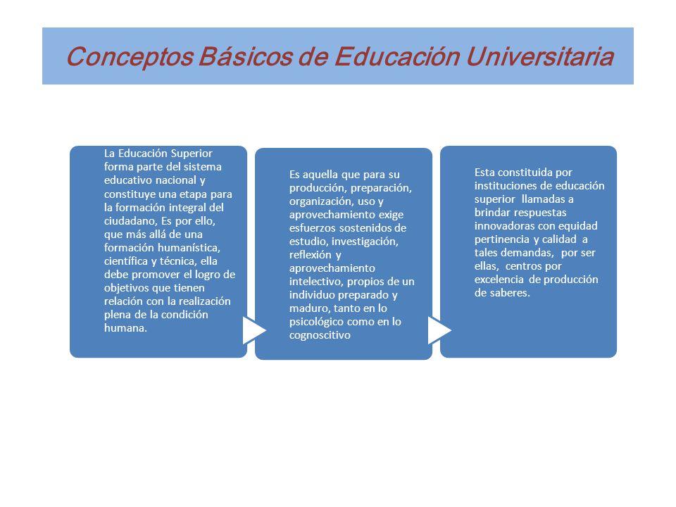 Conceptos Básicos de Educación Universitaria La Educación Superior forma parte del sistema educativo nacional y constituye una etapa para la formación