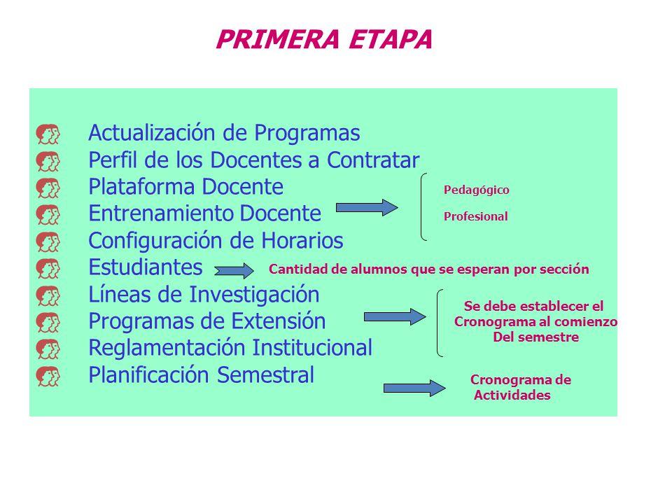 PRIMERA ETAPA Actualización de Programas Perfil de los Docentes a Contratar Plataforma Docente Entrenamiento Docente Configuración de Horarios Estudia